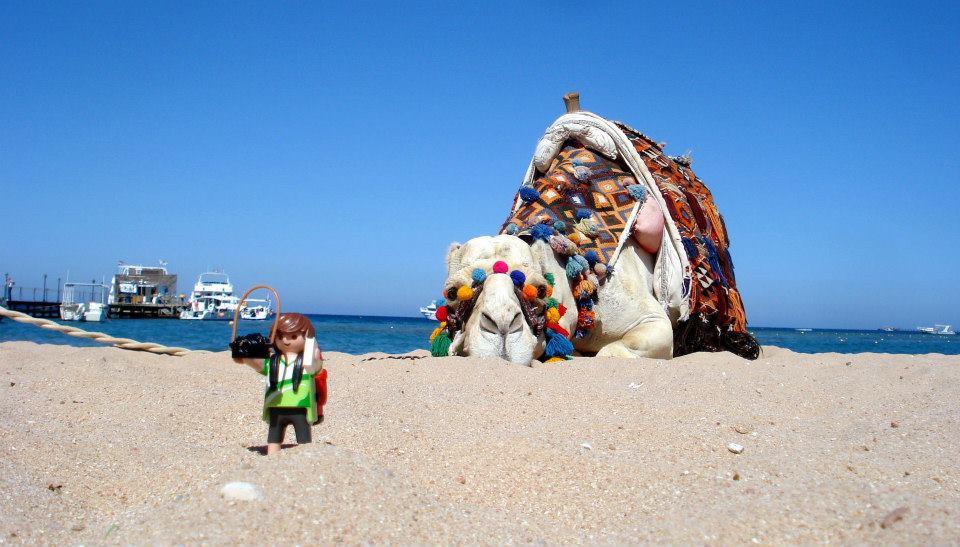 Tim, el Playmobil viajero Egipto